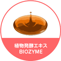 Fermented Vegetable Extract BIOZYME