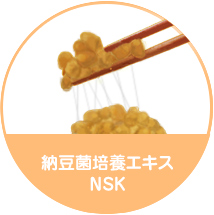 Fermented Soybean Extract NSK
